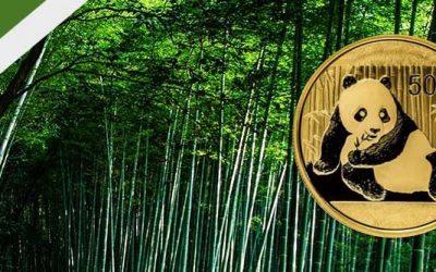 Series Spotlight – Gold & Silver Chinese Panda Coins