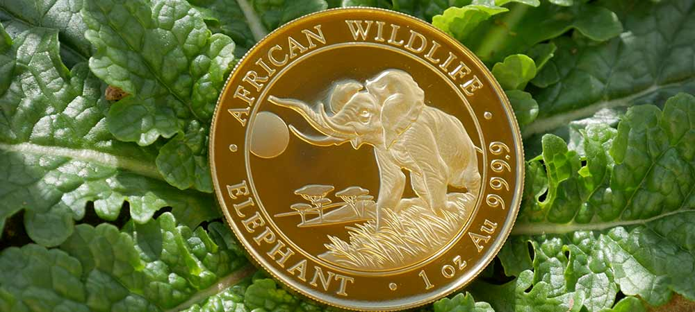 One ounce gold Somalia Elephant, African Wildlife 1000 Shilling coin, manufactured by the Bavarian State Mint