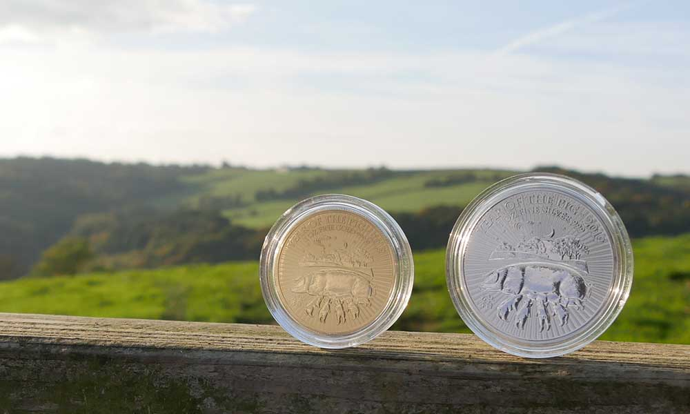 1oz Gold and 1oz Silver UK Lunar Pig Coins, 2019