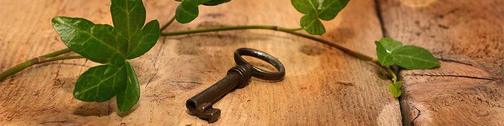 An old key lying on wood infront of some ivy