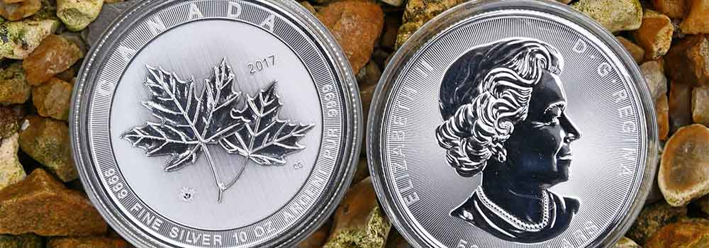 10oz Canadian Silver Coin available at Bleyer