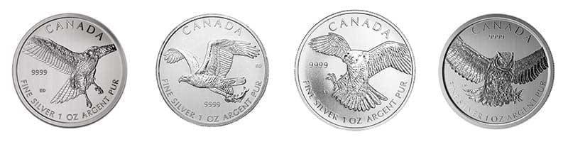 All 1oz Silver Canadian Bird of Prey bullion coins available at Bleyer