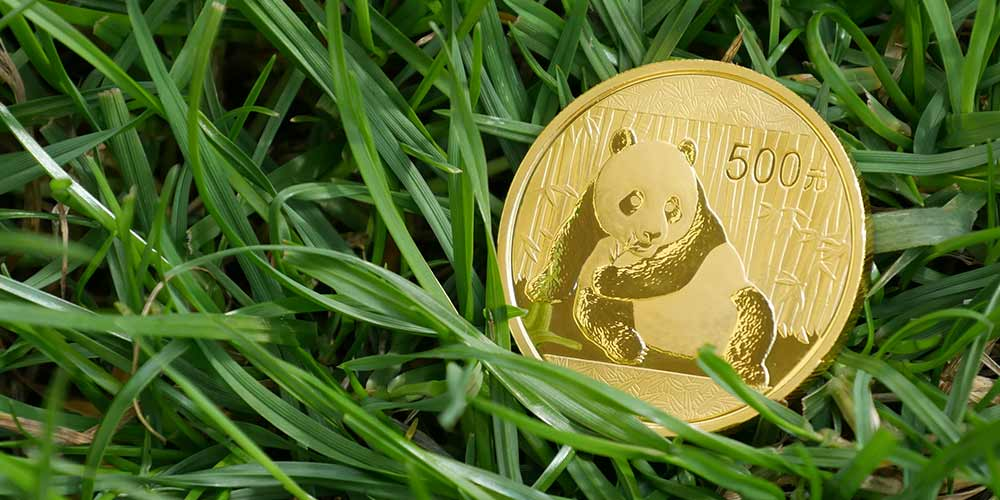 Gold coin with panda