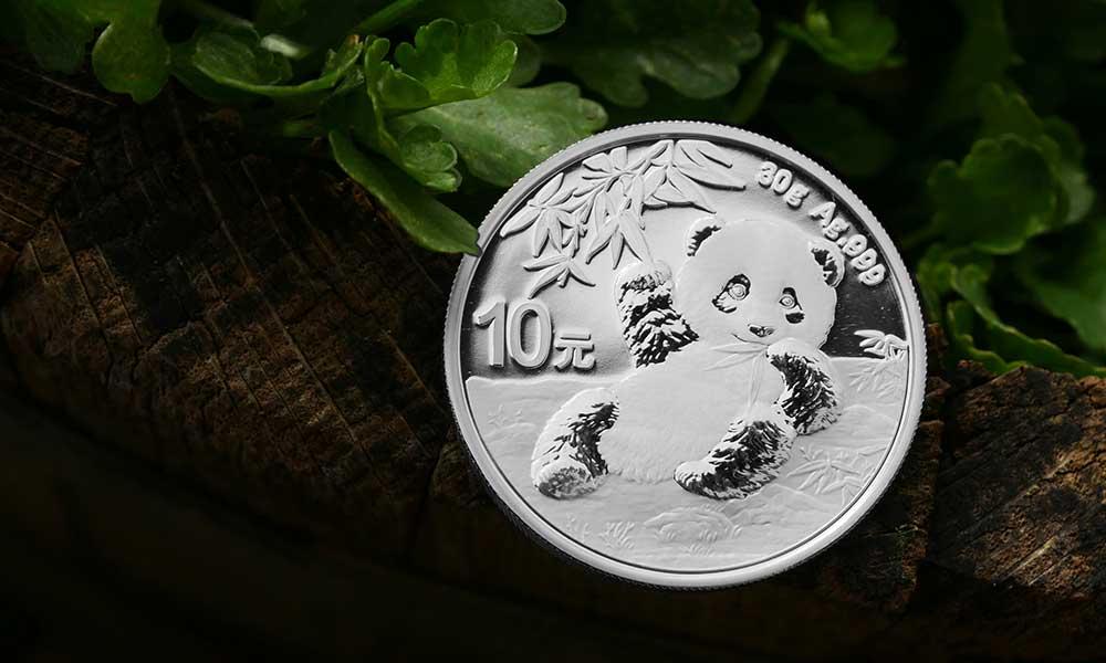 2020 Silver Panda Coin Photo