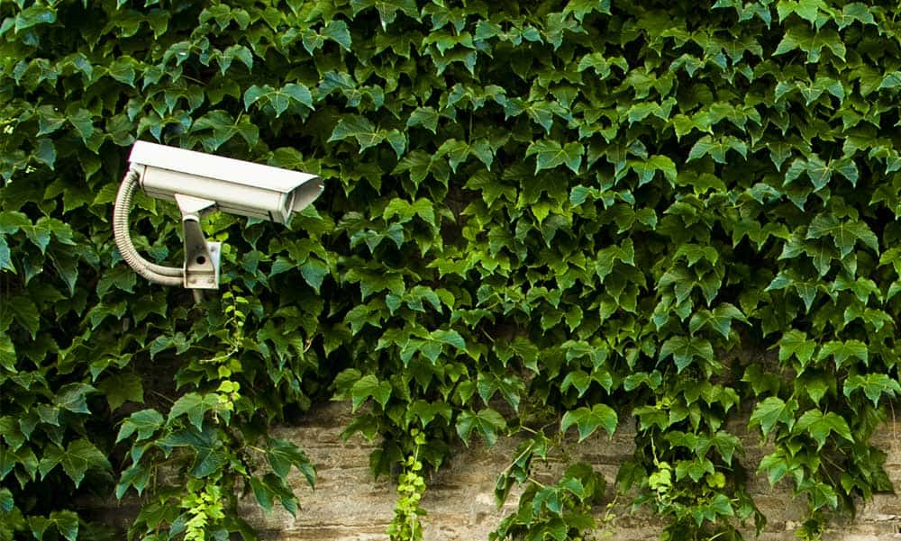 Home Security Top Tips Bullion Storage Security Camera