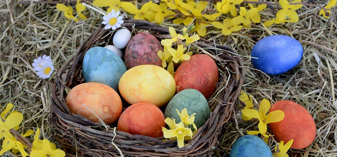 Bleyer's Easter Opening Times